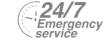 24/7 Emergency Service Pest Control in West Brompton, World's End, SW10. Call Now! 020 8166 9746
