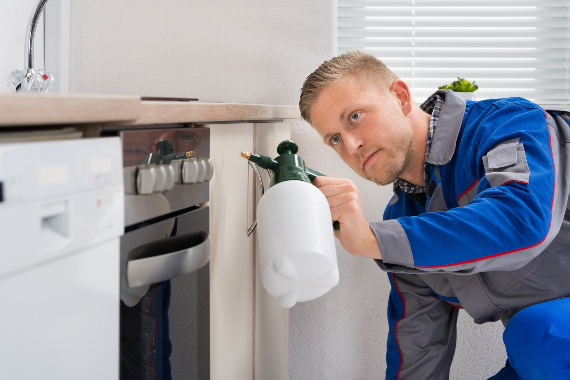 Pest Inspection, Pest Control in West Brompton, World's End, SW10. Call Now 020 8166 9746