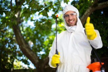 Pest Control in West Brompton, World's End, SW10. Call Now 020 8166 9746